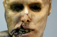 5-Rotten head