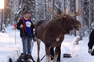 Animatronic designer Chris Clarke puppeteering our moose actor
